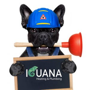 Iguana Heating and Plumbing LTD